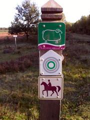 Wandern in der Natur#3 - Wanderweg, Reitweg, Weg, Erlebnisweg, Wegzeichen, Wegweiser, Wegmarkierung, Markierung, wandern, orientieren, Orientierungspunkt, Naturpark Südheide
