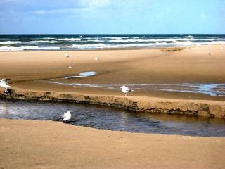 Priel#3 - Priel, Nordsee, Küste, Meer, Wasser, Strömung, Abriss, Abrisskante, Sand, Gefahr, Flut, Ebbe, Wellen