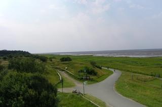 Geest3 - Geest, Salzwiese, Neulandgewinnung, Nordsee, Nordseeküste, Watt, Fahrradweg, Tourismus, Teerweg, Spazierweg