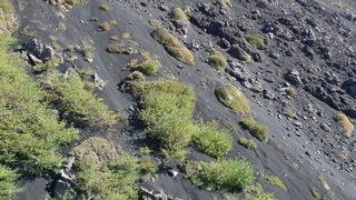 Ätna #07 - Ätna, Etna, Lava, Lavafeld