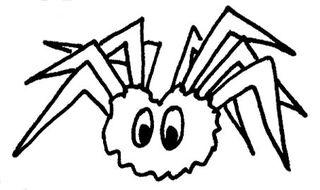 Spinne - Spinnennetz, Spinnentier, Illustration, spinnen, Anlaut Sp, Halloween, gruselig, gruseln, Ekel, Netz, ekeln, achtbeinig, acht