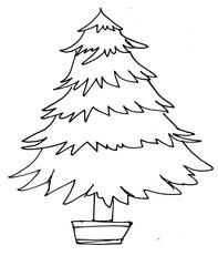 Weihnachtsbaum 1 - Weihnachtsbaum, Weihnachten, Advent, Christmas, Christmas tree, Tanne, Fichte, Nadelbaum, Wörter mit au