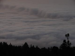 Blick auf die Wolken über La Oratova, Teneriffa 2 - Teneriffa, Nebel, Wolken, Abendstimmung, Silhouette, Abend, Wolkenmeer