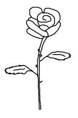 Rose #1 - Rose, Blume, Blüte, Dornen, Illustration, Anlaut R, Zeichnung, Liebe, Love, verliebt, Glück, Gefühl, Symbol