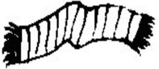 Schal - Schal, Wollschal, Winterschal, Strickschal, Kleidung, scarf, clothes, Winterkleidung, Wolle, warm, gestrickt, Winter, Anlaut Sch, Wörter mit sch