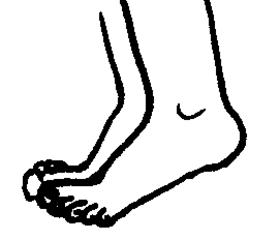 Füße 2 - Füße, Fuß, Bein, Körper, Körperteile, body, body parts, foot, feet, leg, Wörter mit ß, Wörter mit ü