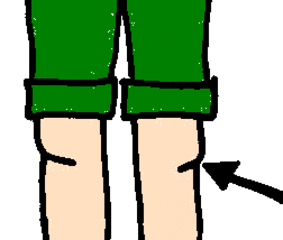 Knie - Knie, Bein, Körper, Körperteile, body, body parts, leg, knee