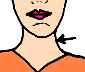Hals - Hals, Körper, Körperteile, body, body parts, neck