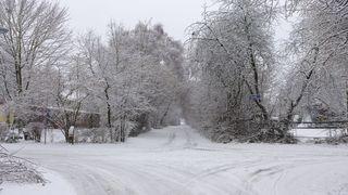 Wegkreuzung in Winterlandschaft - Winter, Winterlandschaft, Weg, Kreuzung, Schnee, Stille, Meditation, Beschreibung