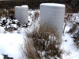 Frostschutz bei Pflanzen #1 - Pflanzen, Pflanze, Winter, Schutz, Frost, Frostschutz, Kälte, Vlies, schützen, kalt, erfrieren, Schnee, Eis, einpacken