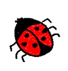 Marienkäfer - Marienkäfer, rot, schwarz, Tier, Insekt, Käfer, Anlaut K, Anlaut M, Glück, Symbol