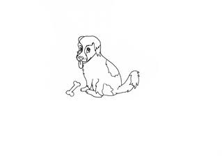 Kleines Hündchen - Hund, Hündin, Welpe, Hündchen, Haustier, Tier
