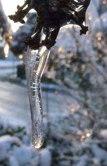 Eiszapfen #3 - Eis, Eiszapfen, Winter, Kälte, kalt, Tauwetter