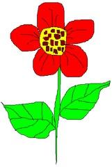 Blume 1 - Blume, Garten, Pflanze, Blüte, Blätter, Farbe, Rot, Sommer