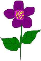 Blume 3 - Blume, Garten, Pflanze, Blüte, Blätter, Farbe, Sommer, Violett, Lila