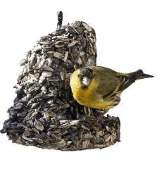 Erlenzeisig an der Futterglocke - Erlenzeisig, Futter, Glocke, Futterglocke, Vogel, füttern, Fütterung, Finken, Fink