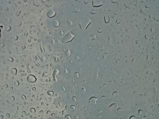 Tropfen-Hintergrund für Präsentation - Wasser, Tropfen, Regentropfen, Wassertropfen, Regen, Hintergrund, Layout, grau, Niederschlag, Adhäsion, Kohäsion, Physik, benetzend, flüssig, kugelförmig, Flüssigkeit, spritzer, spritzen, drop, nass, tropfnass