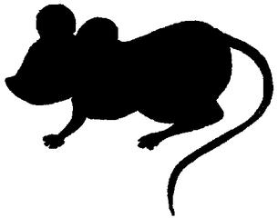 Maus - Umrissbild - Maus, Tier, Umriss, Vorlage, schwarz, Säugetier, Nager, Nagetier