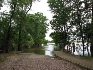 Hochwasser der Elbe #2 - Hochwasser, Überflutung, Überschwemmung, Elbe