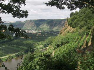 Moseltal #3 - Brücke, Mosel, Moseltal, Moselschleife, weit, hoch, Wein, Weinberge, Tal, Blick, Aussicht, Wald, steil, Hang, Hänge, Weinbau, Reben