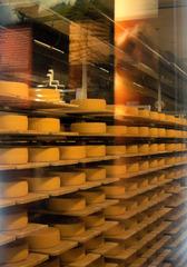 Käseherstellung im Appenzeller Land (CH) #5 - Käse, Käseherstellung, Schaukäserei, Handwerk, Käserei, Appenzell, Appenzeller, Milch, Käsemeister, reifen, Laib, Laibe, Salz, Kräutersulz, Temperatur, Lebensmittel, Tradition, Schweiz, Chemie, Ernährunglehre, Milchsäuregärung, Gärung, Gerinnung, Fermentierung, Kasein