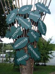 Abenteuer Wald - Wald, Assoziationen, Abenteuer, Spielplatz, Fitness, Ruhe, Entspannung, Gesundheit, Bewegung