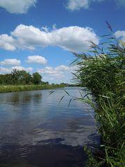 Am Kanal - Kanal, Entwässerung, Schilf, Wasserstraße, Verkehr