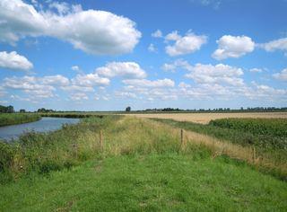 Ostfriesland - Ostfriesland, Landschaft, Kanal, Feld, Getreide, Wolken