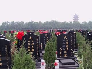 Ruhe - Ethik, Stimmungsbild, Friedhof, Stimmungsbild, Wege, Tod, Ruhe, Grab, Gräber, Friedhof, Beisetzung, Beerdigung, Stille