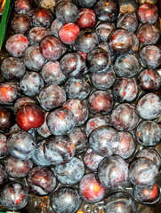 Pflaumen - Pflaume, Pflaumen, Obst, Frucht, Früchte, Steinobst
