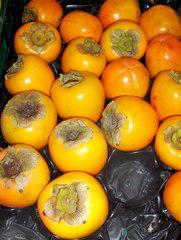 Kaki, Sharonfrucht - Kaki, Sharonfrucht, Ebenholzgewächs, Kulturpflanze, Obst, Baum, Frucht, süß, orange