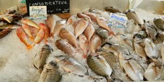 Poissons - Frankreich, civilisation, poisson, Fisch, Stand, Dorade
