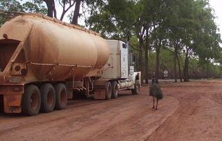 Roadtrain & Emu - Emu, Roadtrain, Australien, Australia, Icons, Outback