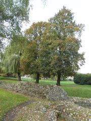 Römische Mauer in Tongeren - Römische Mauer, Römische Stadtmauer, Römisches Reich, Belgien, Römer