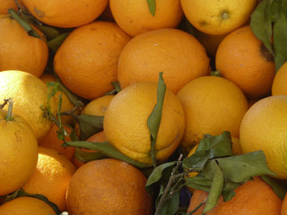 Zitrusfrüchte - Zitrusfrüchte, Rautengewächs, Duftlieferant, Insektenabwehr, ätherische Öle, Obst, Vitaminspender