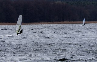 Wassersportart Windsurfen - surfen, Wasser, Wassersport, Sport, Sportler, Wind, Wellen, Segel, Windsurfen, olympisch, olympische Disziplin, Trendsport, Surfer, See