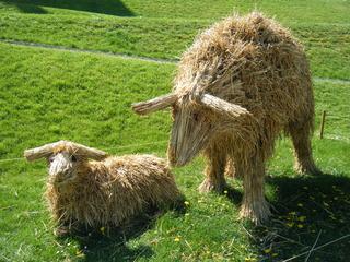 Skulptur aus Stroh #2 - Skulptur, Stroh, Strohskulptur, Kunst, Kunstwerk, Lamm