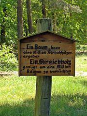 Verhalten im Wald - Baum, Verhalten, belehren, Belehrung, Schild, Umwelt, Wald, Schutz, schützen, Natur, erhalten, Umsicht