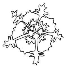 Eisblume - Eisblume, Eiskristall, Eisstern, Wetter, Winter, Jahreszeiten, kalt, Eis, Schneestern, gefrieren, Anlaut Ei