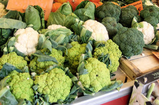 verschiedene Kohlsorten - Spitzkohl, Blumenkohl, Broccoli, Brokkoli, Gemüse