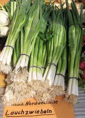 Lauchzwiebeln - Lauchzwiebeln, Frühlingszwiebeln, Frühlingslauch, Zwiebel, Kulturpflanze, Gemüse