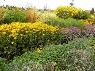 Staudenbeet#6 - Sommer, Blume, Blumen, Sommerblumen, Kunst, Farbenlehre, Gartenanlage, Beet, Blumenbeet