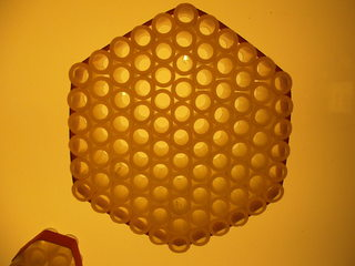 Bienenwabe #1 - Biene, Bienenstock, Honig, Wabengebilde, Zellen, Bienenhaltung, Wabe, Bienenwabe, sechseckig, Imkerei