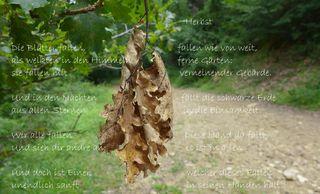 Herbstblatt - Herbst, Blatt, Rilke, Vergänglichkeit, Besinnung, Schreibanlass, Meditation, Endlichkeit, Geborgenheit, Einsamkeit, fallen