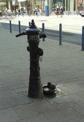 Vogeltränke in der Innenstadt - Hydrant, Taube, Vogeltränke