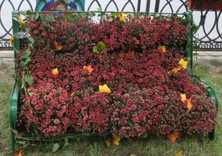 Blumenbank - Blumen, Bank, ausruhen, hinsetzen, Sitzplatz, Erholung