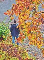 Warten - Herbst, herbstlich, bunt, warten, stehen, denken, Impuls, hoffen, Blätter, Laub, Herbstlaub, Erinnerung, erinnern, Mensch, Geduld, geduldig, wait, allein, einsam, Treffpunkt, treffen, Treff, Schreibanlass, Verb