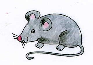Maus - Maus, grau, Nagetier, Anlaut M, fröhlich, Illustration