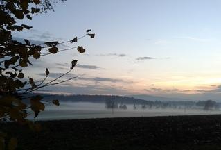 Nebel steigt auf - Nebel, Luft, Luftfeuchtigkeit, Dunst, Wolke, Tau, Niederschlag, Sicht, Sichtbehinderung, Wasser, diesig, trüb, neblig, Wetter, Wetterphänomen