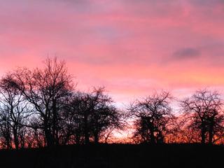 Abendrot - Abendrot, Wetter, Wettererscheinung, Gegenlicht, Umriss, Himmel, Stimmung, Sonnenuntergang